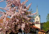 Tourist-Information <br />Sankt Englmar
