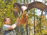 Vogelpark - Tierpark